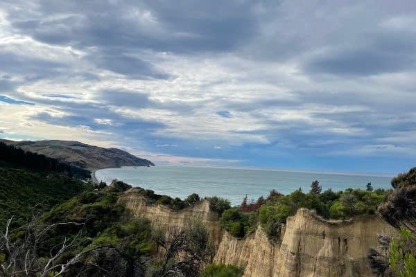 Gap Year in NZ